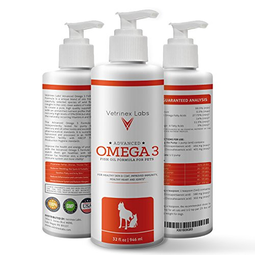 Best fish oil for dry pet skin practical pet care for Fish oil for dogs skin