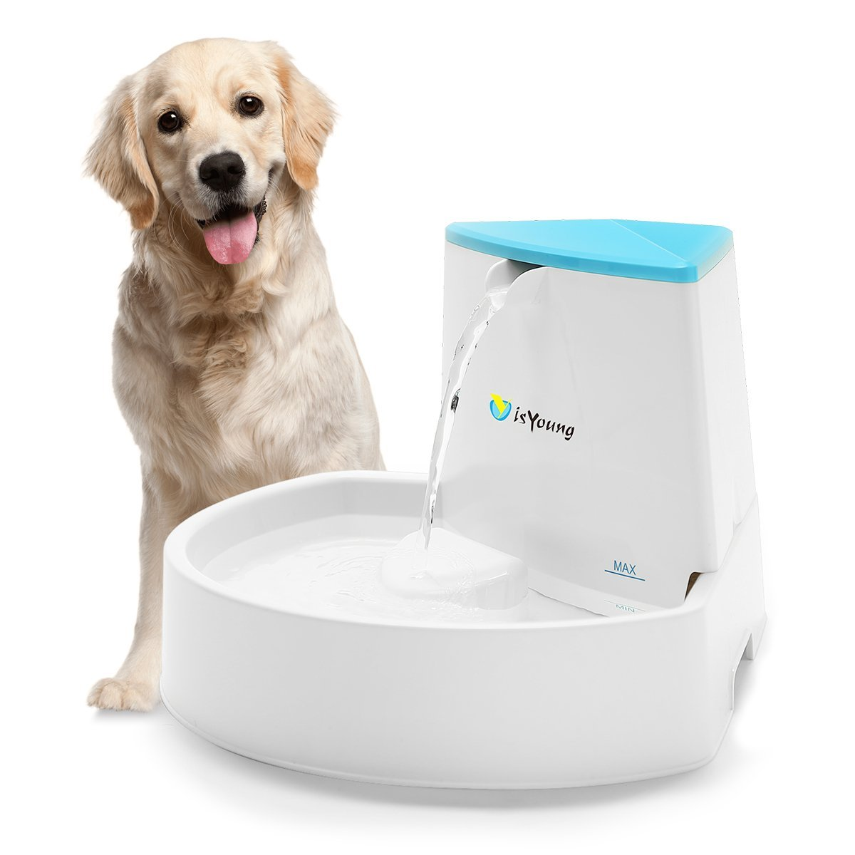 12 Best Dog Drinking Water Fountain Bowl for Outdoor and